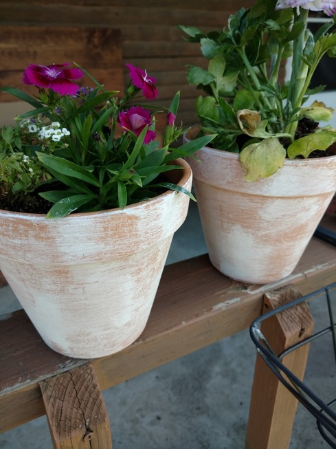 Terracotta pots, garden pots, distressed pots, distressed terracotta pots, diy, diy terracotta pots, front porch, gardening tips, planters